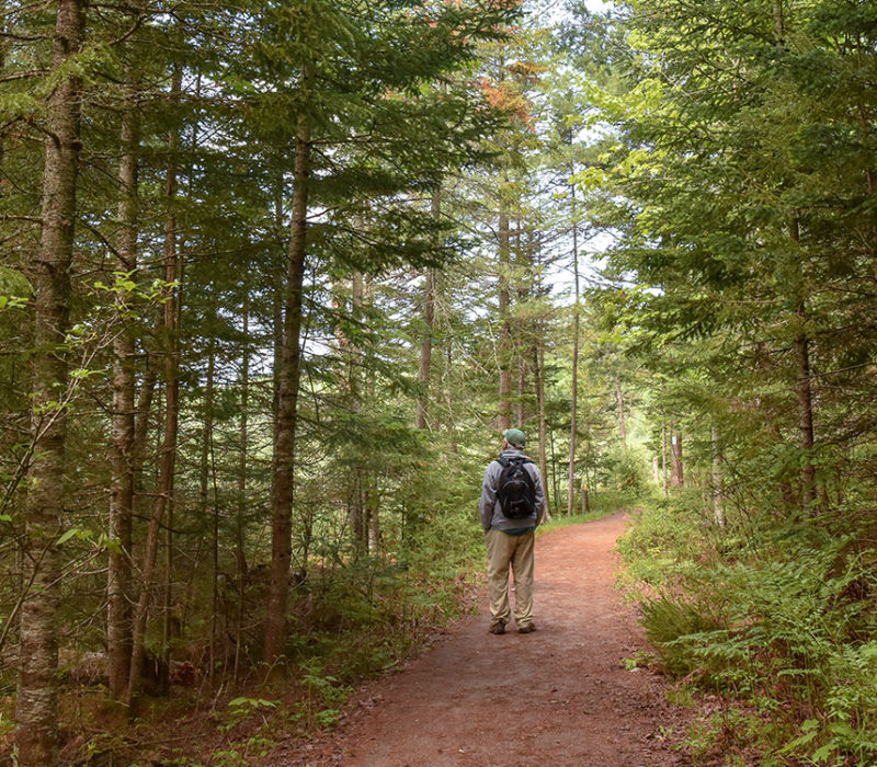 a man walking in the forest