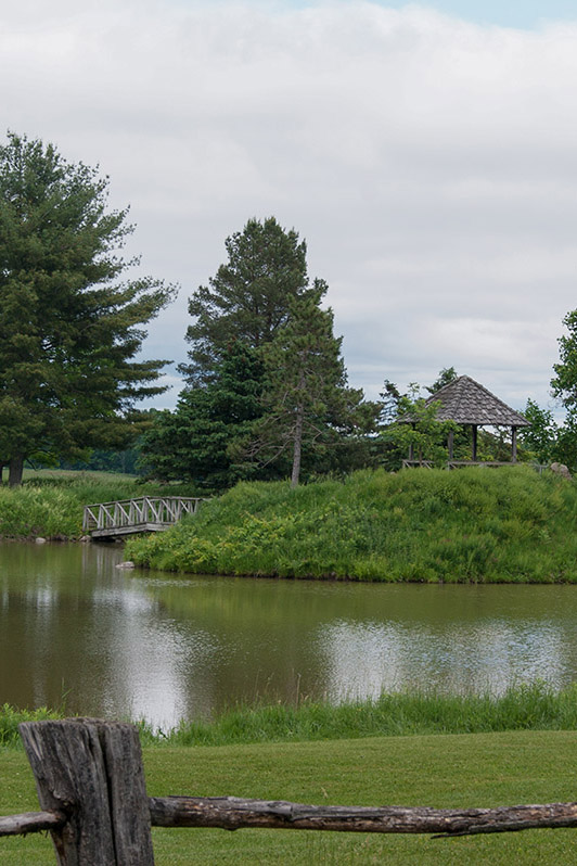 abbey pond and garden